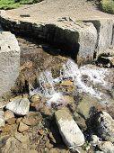 Coastal Stream Waterfall