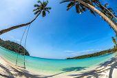 Swings and palm on the sand tropical beach. Fisheye look
