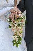Wedding Couple Showing Rings