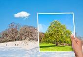 Memorable Picture Summer Vs Winter