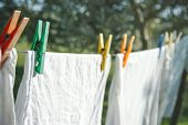 stock photo of clotheslines  - Closeup of white clean t - JPG