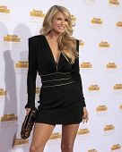 LOS ANGELES - JAN 14:  Christie Brinkley at the 50th Sports Illustrated Swimsuit Issue at Dolby Theatre on January 14, 2014 in Los Angeles, CA
