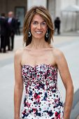NEW YORK - MAY 18: Caryn Zucker attends the 69th annual American Ballett Theatre spring gala at The Metropolitan Opera House on May 18, 2009 in New York City.