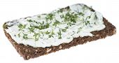 Cream Cheese With Garden Cress (on White)