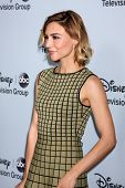 LOS ANGELES - JAN 17:  Samaire Armstrong at the Disney-ABC Television Group 2014 Winter Press Tour Party Arrivals at The Langham Huntington on January 17, 2014 in Pasadena, CA