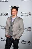 LOS ANGELES - JAN 17:  Steve Zahn at the Disney-ABC Television Group 2014 Winter Press Tour Party Ar