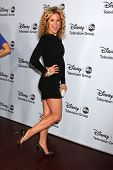 LOS ANGELES - JAN 17:  Alexis Carra at the Disney-ABC Television Group 2014 Winter Press Tour Party