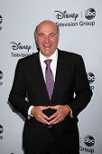 LOS ANGELES - JAN 17:  Kevin O'Leary at the Disney-ABC Television Group 2014 Winter Press Tour Party Arrivals at The Langham Huntington on January 17, 2014 in Pasadena, CA