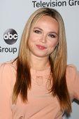 LOS ANGELES - JAN 17:  Amanda Fuller at the Disney-ABC Television Group 2014 Winter Press Tour Party