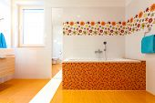 Big Orange Bath In Cute Contemporary Bathroom