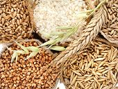 groats seed meal and grains in bags close up top view surface  background
