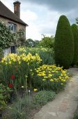 picture of english cottage garden  - A herbaceous border in an English cottage garden - JPG