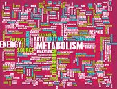 Metabolism as a Medical Health Exercise Concept