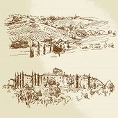vineyard - hand drawn illustration
