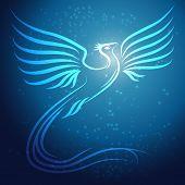 Shining Abstract Phoenix Bird On Blue Background With Stars