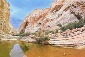 Picturesque canyon Ein-Avdat in the Negev desert. Clean cold water in the creek canyon. Sandstone wa