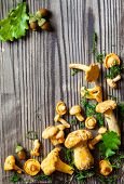 Fresh mushrooms with moss and leaves on wooden background