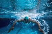 pic of breast-stroke  - Fit swimmer training by himself in the swimming pool at the leisure centre - JPG