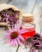 Essential Oil In Glass Bottle And Coneflower On Wooden Rustic Table