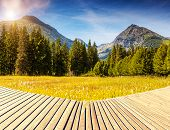 Fantastic mountain meadows in National Park High Tatra. Dramatic scenery. Strbske pleso, Slovakia, E