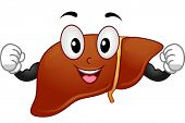 Mascot Illustration Featuring a Liver Flexing Its Muscles