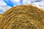 hay stack close-up on cloudy sky background