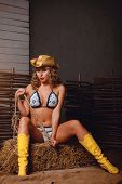stock photo of scourge  - Bikini girl in cowboy hat and boots - JPG