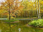 Autumn Landscape, Red Tree On Island