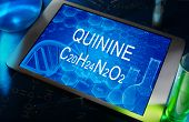 the chemical formula of quinine