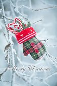 Christmas Greeting Card With Candy Canes Mitten