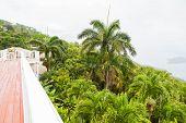 Veranda Overlooking Lush Greenery And St Thomas Bay