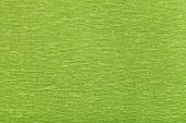 Background From Fibrous Structure Green Paper
