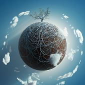 bare tree on small planet