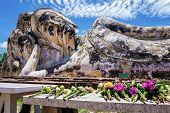 Flowers offered to the reclining Buddha of Wat Lokaya Sutha, Thailand