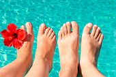 Feet Of A Young Couple By The Pool With A Red Flower