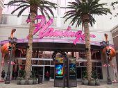 Giant Pink Flamingos At The Flamingo Hotel, Las Vegas