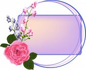 illustration with pink rose and small flowers in frame isolated on white background