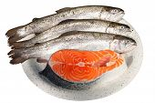 fresh trout and salmon steak on a dish