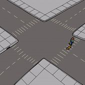 Pedestrian And Animal On Street