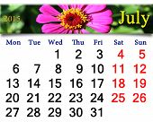 Calendar For July Of 2015 Year With Image Of Red Zinnia