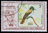 Gundlach And Birds