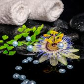 Spa Concept Of Passiflora Flower, Branch Fern, Towels, Zen Basalt Stones With Drops And Pearl Beads
