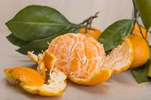 Mandarin Or Tangerine With Leaves And Branches On A Marble Table