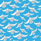 Illustration Of Doves