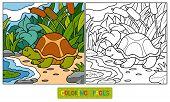 stock photo of tortoise  - Game for children - JPG