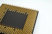 stock photo of microprocessor  - Gold pins microprocessor seen close up on white background - JPG