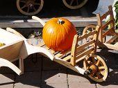 Pumpkin On A Barrow