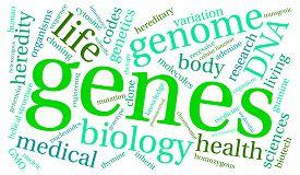 pic of genes  - Genes word cloud on a white background - JPG