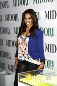 LOS ANGELES - MAY 10:  LaLa Vasquez at the Kim Kardashian & Midori Melon Liqueur launches The Midori