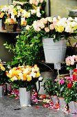 A florist's stall